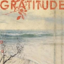 gratitude-grit